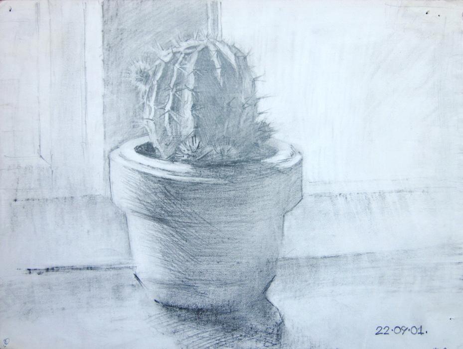 draw12